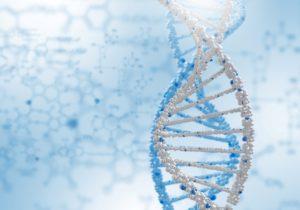 Badanie ojcostwa na podstawie 24 markerów dna