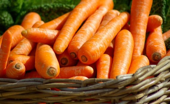 Jakie warzywa warto uprawiać w przydomowym ogródku ?