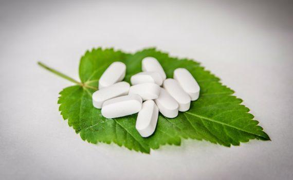 Inulina - prebiotyk, który przyspiesza odkwaszanie organizmu