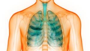 Leczenie przewlekłej obturacyjnej choroby płuc