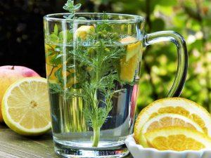 Jakie zioła wspomagają funkcjonowanie układu odpornościowego?