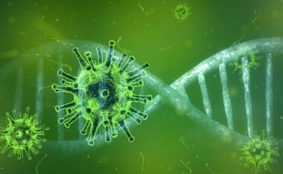 NFZ udostępnił infolinię na temat koronawirusa: 800 190 590