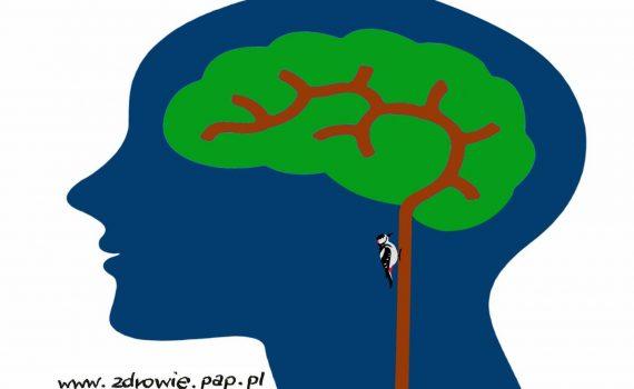 PKU: choroba rzadka i wymagająca, ale da się z nią żyć